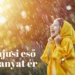 májusi eső aranyat ér