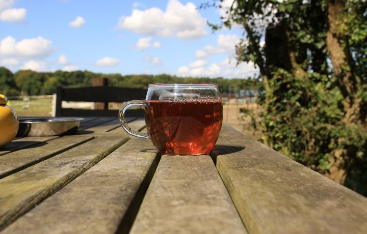 meleg tea hőség ellen